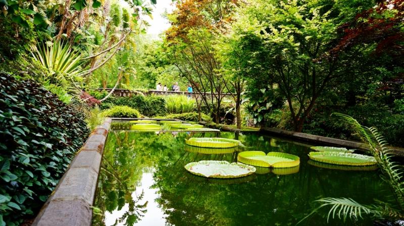 Азорские острова, Сан Мигель: парк Terra Nostra