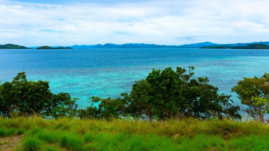 Остров Pass Island - Бусуанга