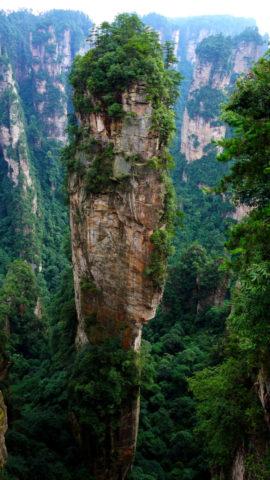 Парк Чжанцзяцзе: Yuanjiajie Scenic Area
