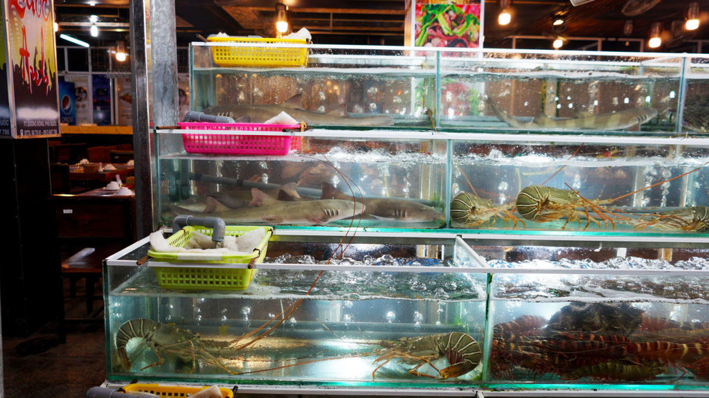 Фукуок: ночной рынок (Night market)