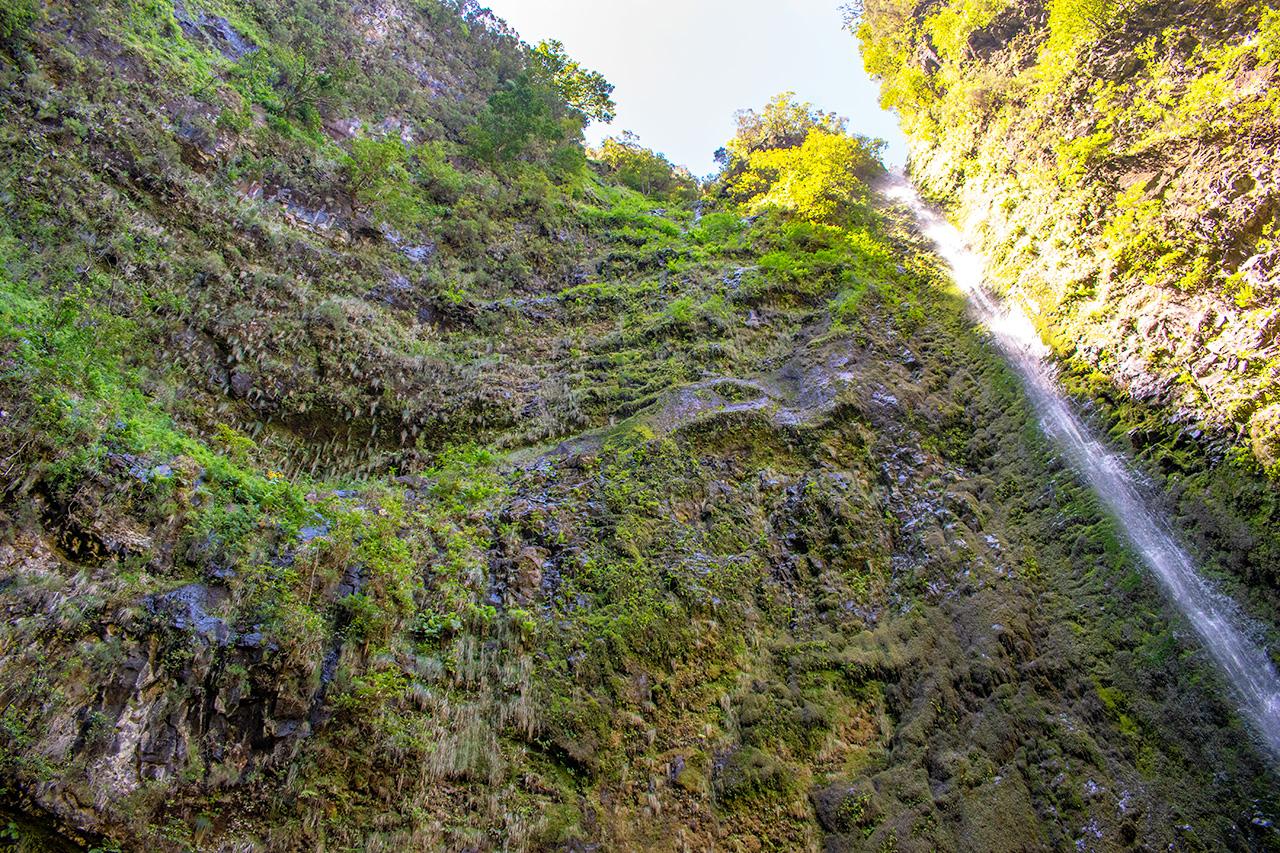 Мадейра, Португалия: Levada do Caldeirao Verde
