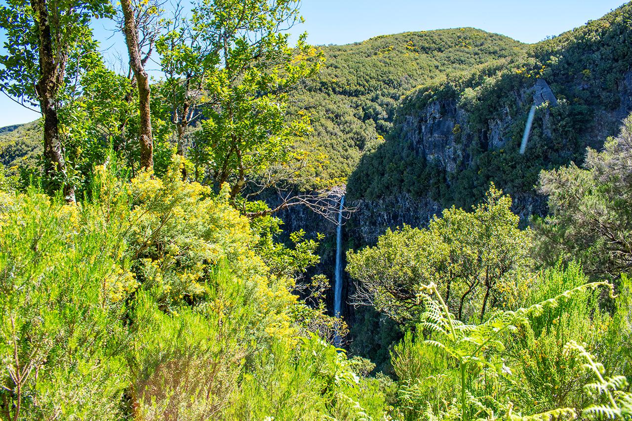 Мадейра, Португалия: водопад Risco