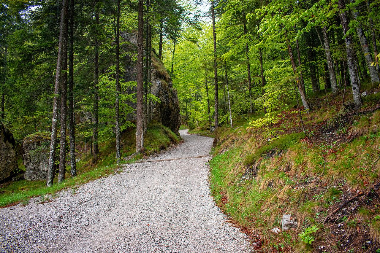 Мольвено, Италия: маршрут Dolomiti Paganela