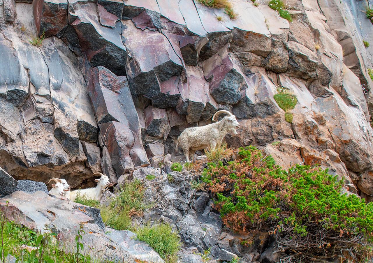 Терскол, Приэльбрусье: маршрут к водопаду Девичьи косы