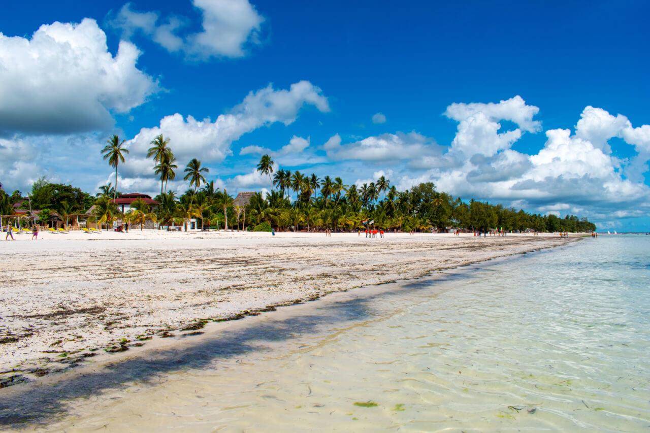 Занзибар, Танзания - пляж Kiwengwa  Занзибар, Танзания Zanzibar 61