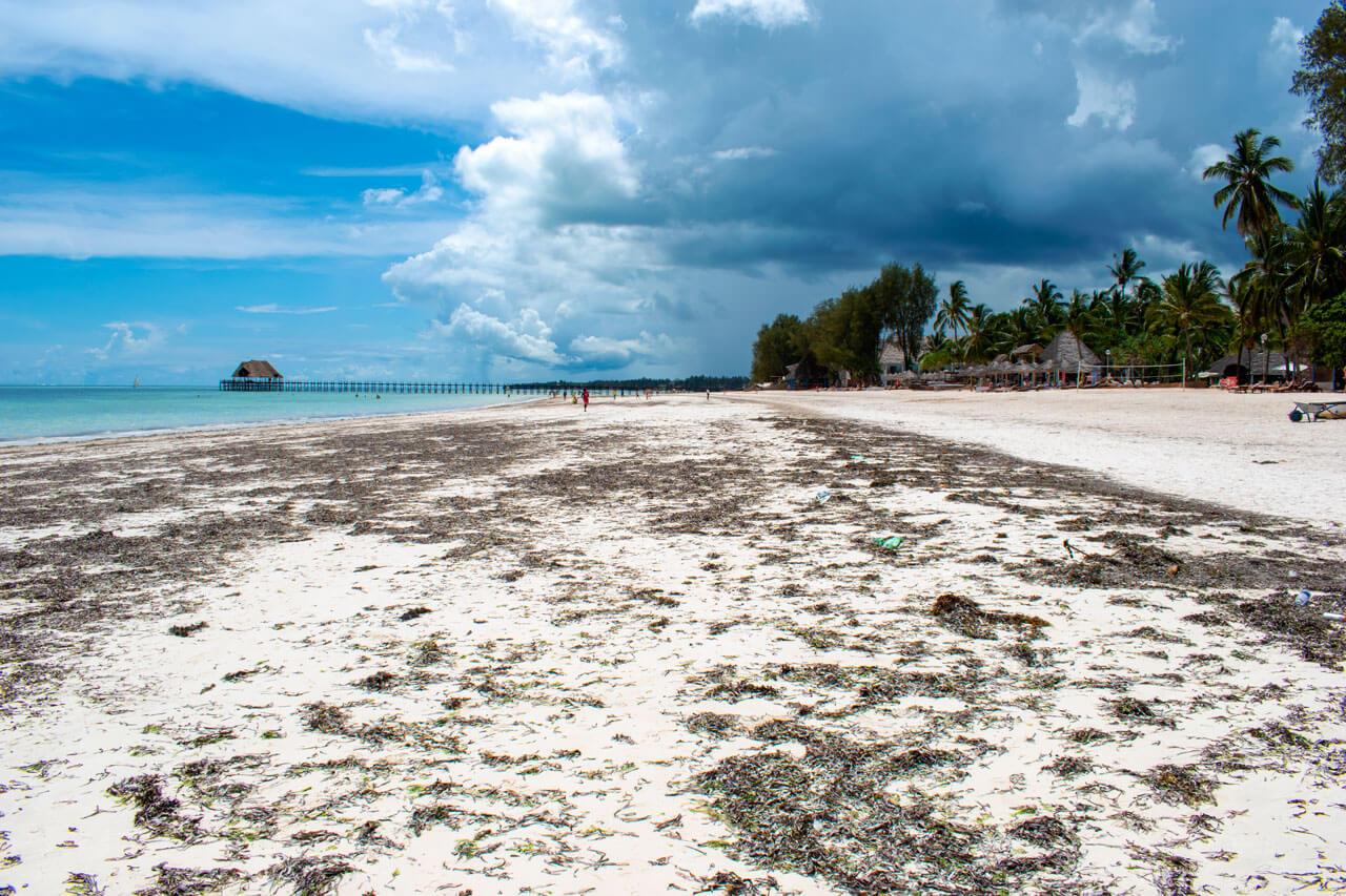 Занзибар, Танзания - пляж Kiwengwa  Занзибар, Танзания Zanzibar 62