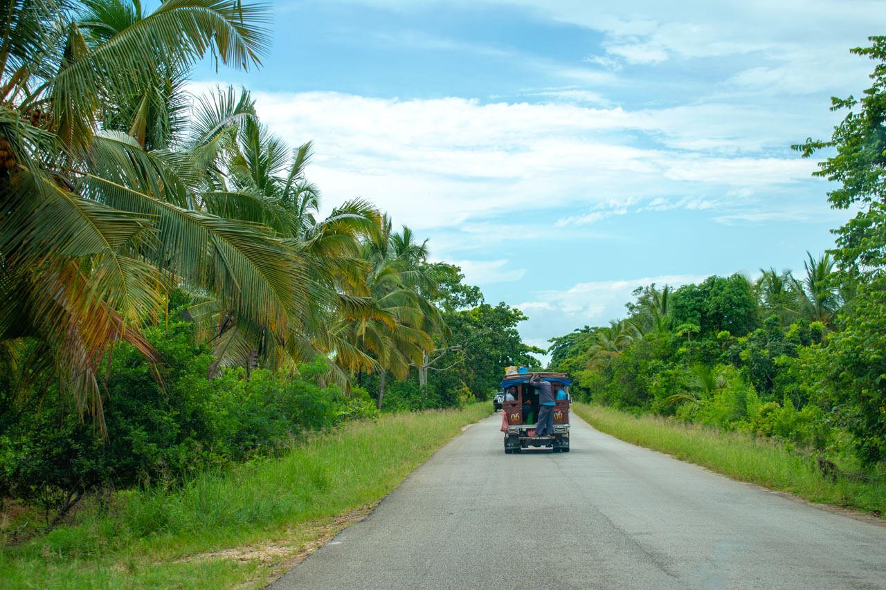 Дала-Дала, Занзибар  Занзибар, Танзания Zanzibar 71