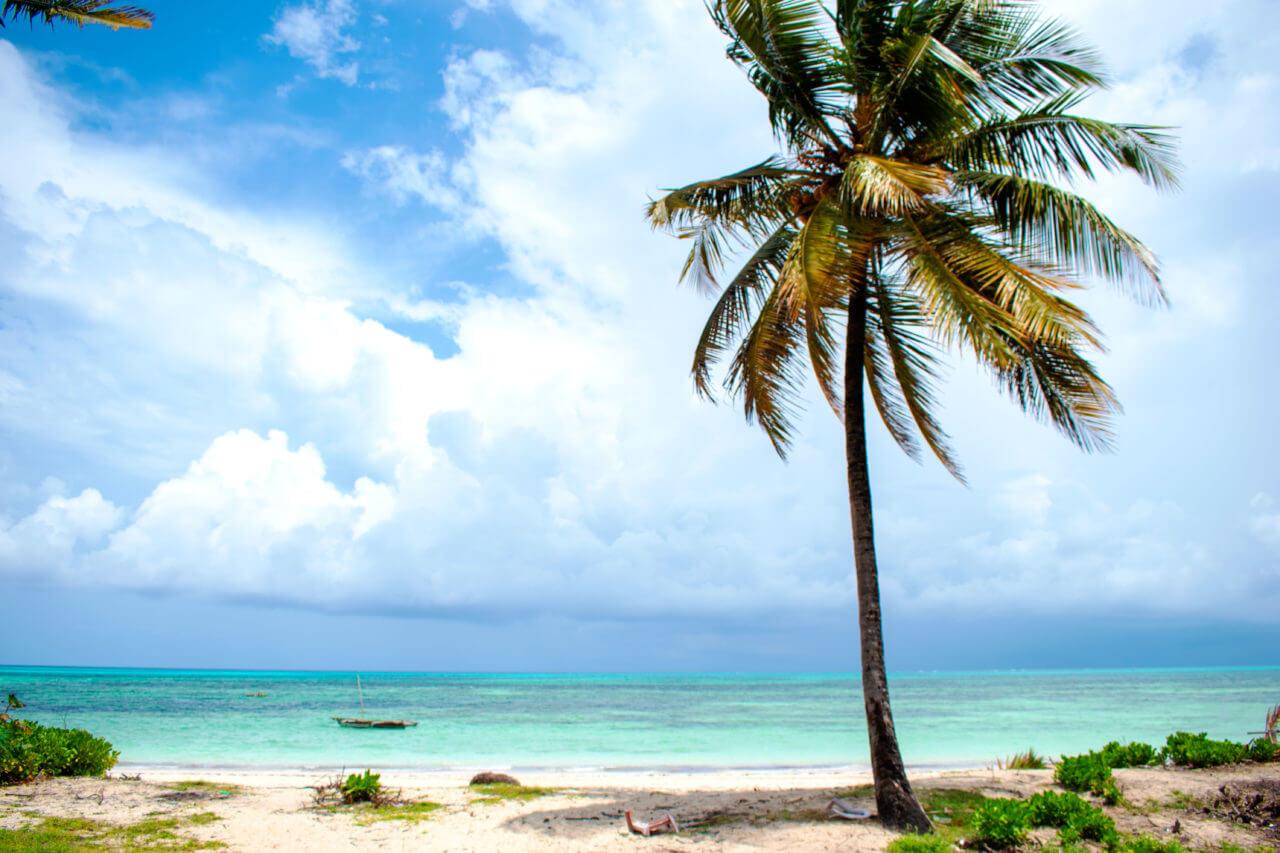Занзибар, Танзания - пляж Джамбиани  Занзибар, Танзания Zanzibar 84