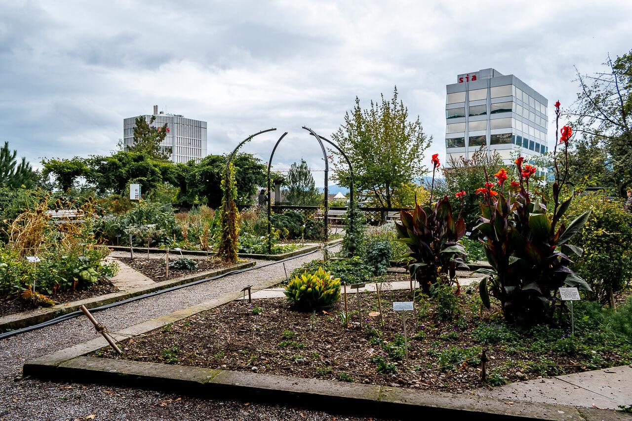 Цюрих, Швейцария: Парк Альтер Ботанишер Гартен