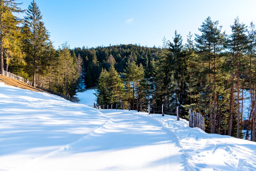 Зеефельд, Австрия: беговые лыжи