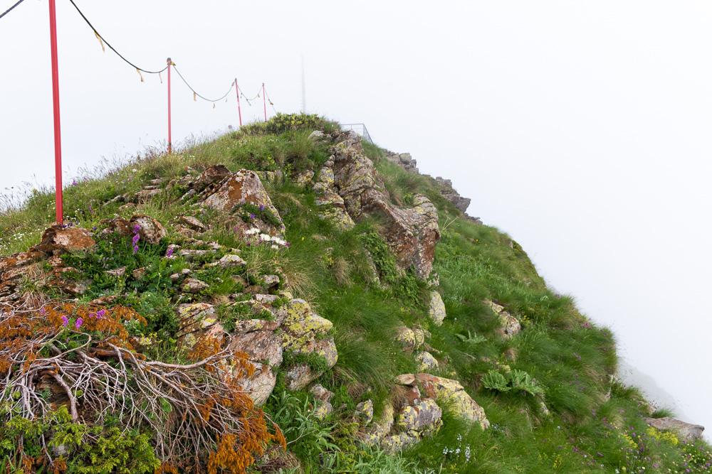 Роза Хутор летом: маршрут Каменный столб